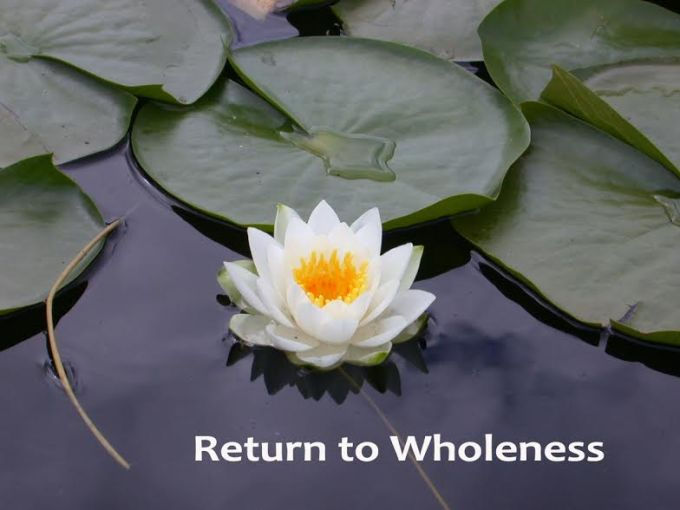 return-to-wholeness-lotus